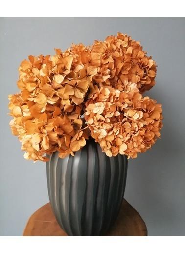 Kuru Çiçek Deposu Solmayan Gerçek Ortanca Buketi Turuncu 4-5 Adet , Kuru Çiçek Oranj